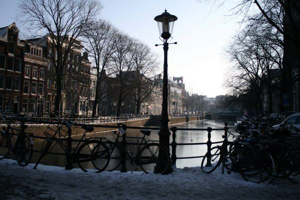 I Amsterdam - Trends and Tolstoy